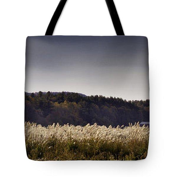Autumn Grasses - North Carolina Autumn Scene Tote Bag by Rob Travis
