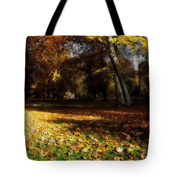 Autumn Tote Bag by Hannes Cmarits
