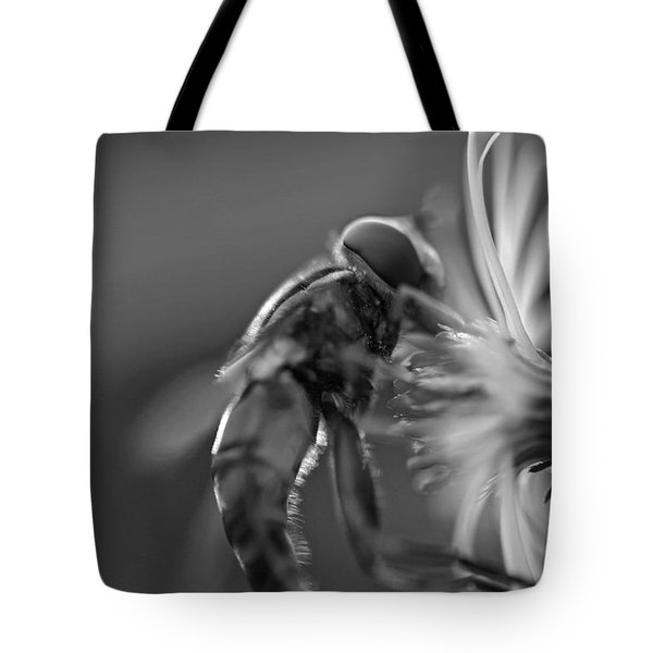 Autumn Harvest Tote Bag by David Rucker