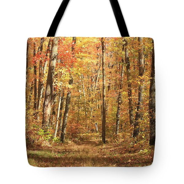 Tote Bag featuring the photograph Autumn In Minnesota by Penny Meyers