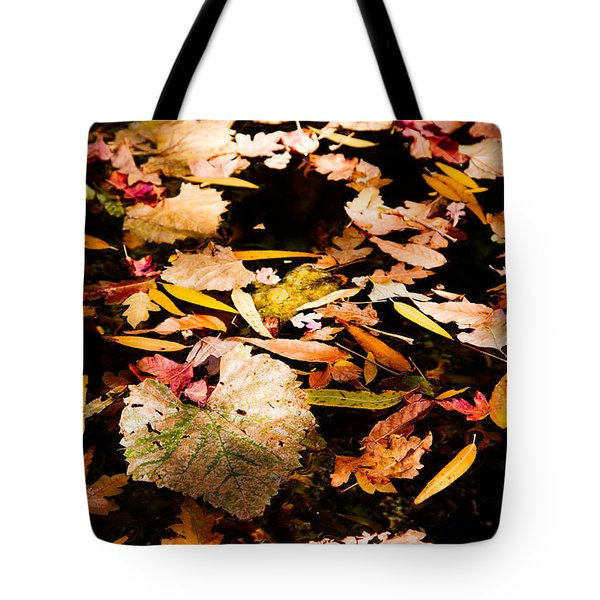 Autumn In Texas Tote Bag