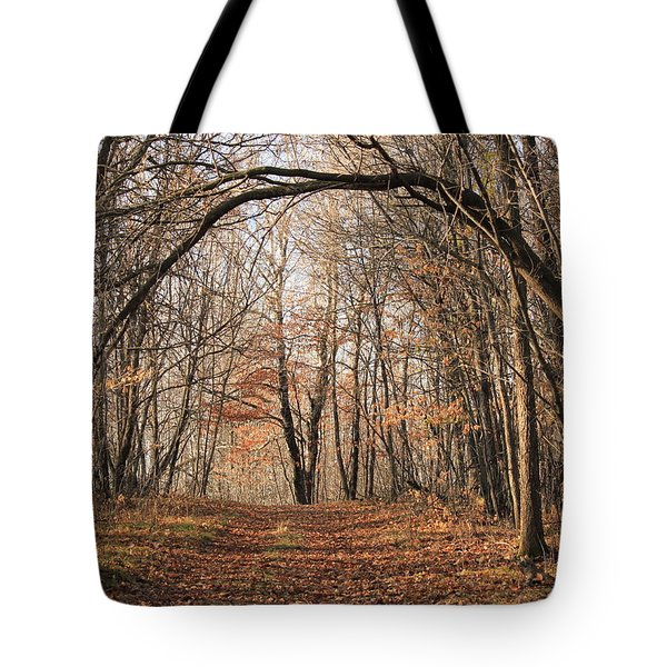 Tote Bag featuring the photograph Autumn In The Woods by Penny Meyers