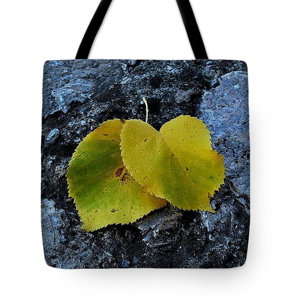 Tote Bag featuring the photograph Autumn Is My Love by Marija Djedovic