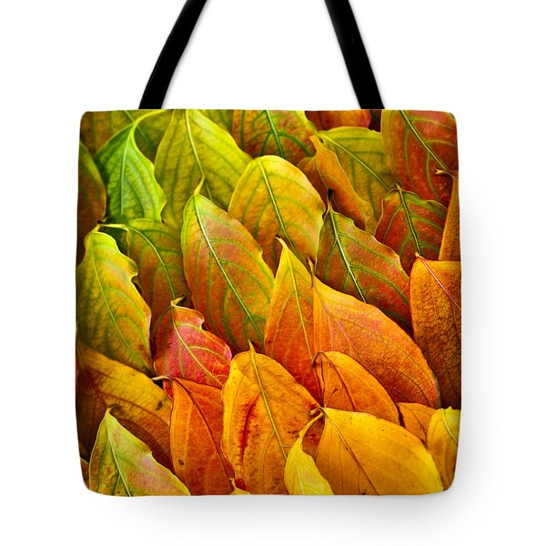 Autumn Leaves Arrangement Tote Bag by Elena Elisseeva