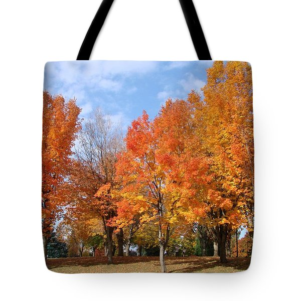 Tote Bag featuring the photograph Autumn Leaves by Athena Mckinzie