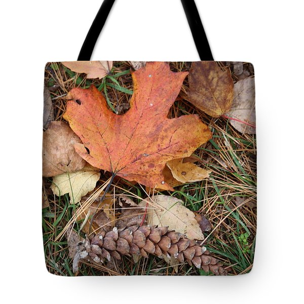 Tote Bag featuring the photograph Autumn Leaves by Donna  Smith