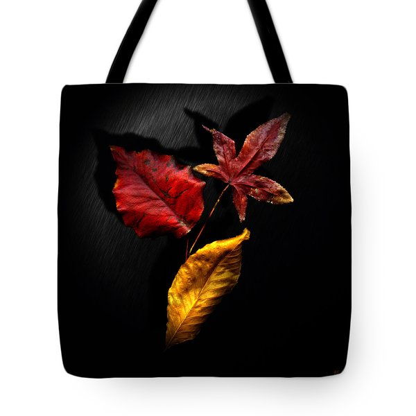 Tote Bag featuring the photograph Autumn Leaves by Gerlinde Keating - Galleria GK Keating Associates Inc