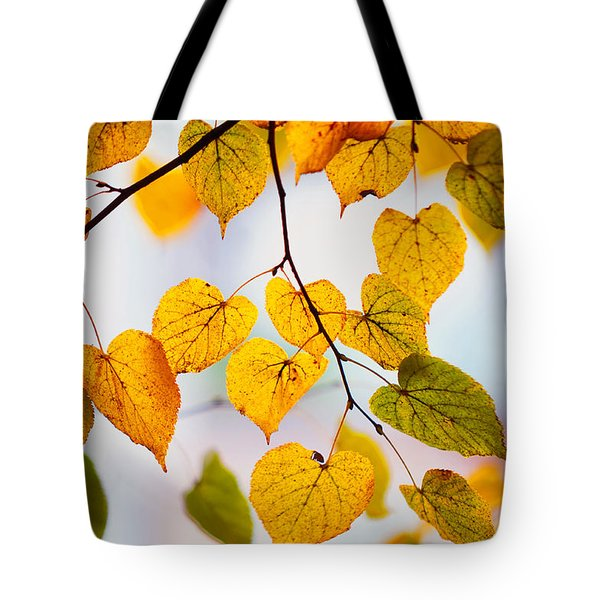 Autumn Leaves Tote Bag by Jenny Rainbow