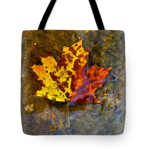 Tote Bag featuring the digital art Autumn Maple Leaf In Water by Debbie Portwood