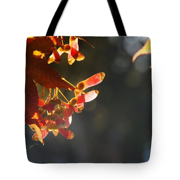 Autumn Maple Tote Bag by Mick Anderson