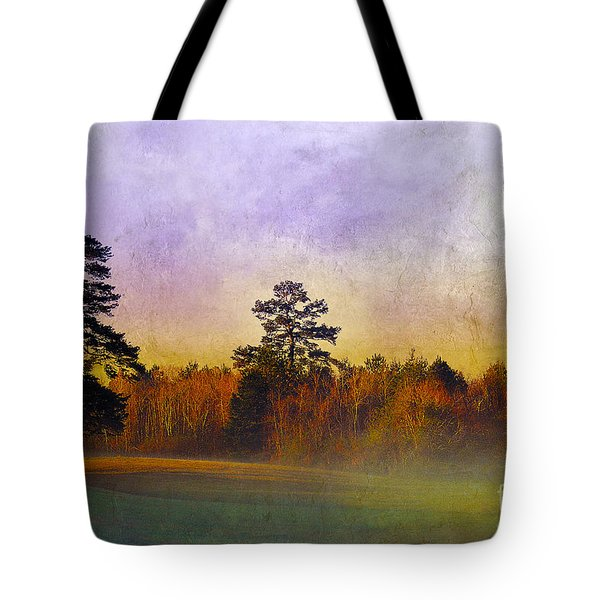 Autumn Morning Mist Tote Bag by Judi Bagwell