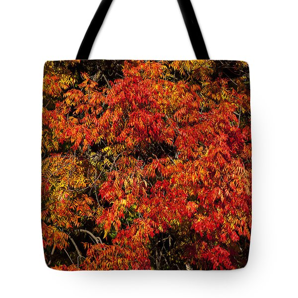 Autumn Red Tote Bag by Garry Gay