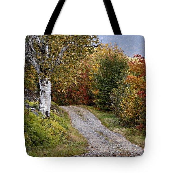 Autumn Road - D005840 Tote Bag by Daniel Dempster