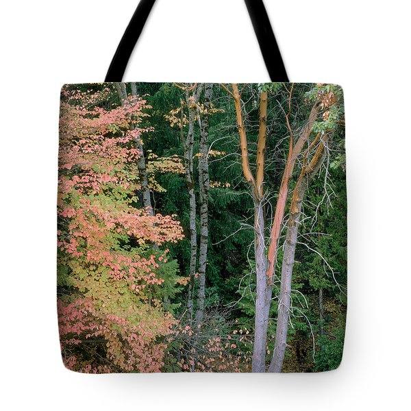 Autumn Scene Tote Bag by Mark Greenberg