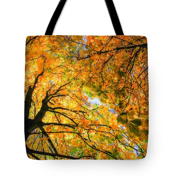 Autumn Sky Tote Bag by Hannes Cmarits
