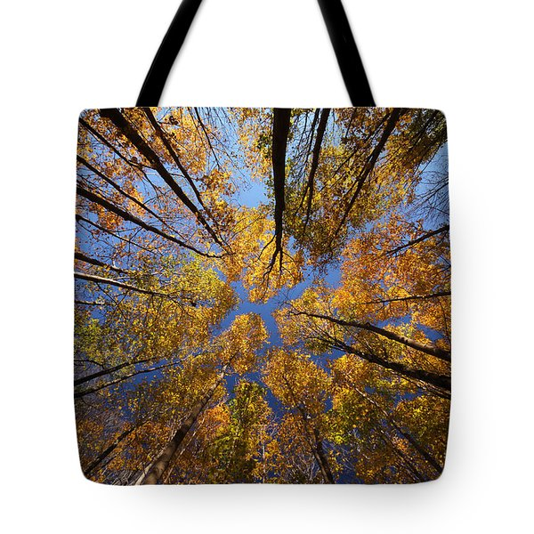 Autumn Sky Tote Bag by Mircea Costina Photography
