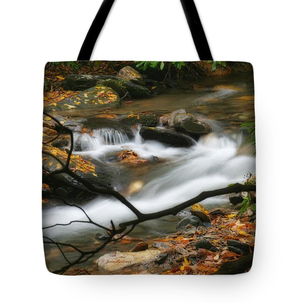 Tote Bag featuring the photograph Autumn Spring by Joan Bertucci