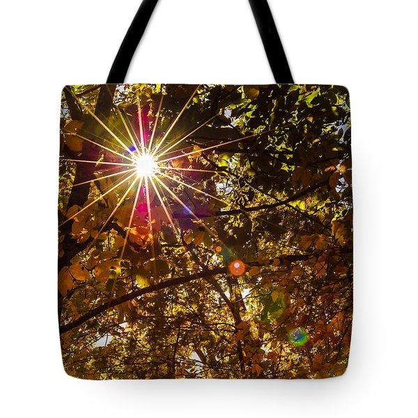 Autumn Sunburst Tote Bag by Carolyn Marshall