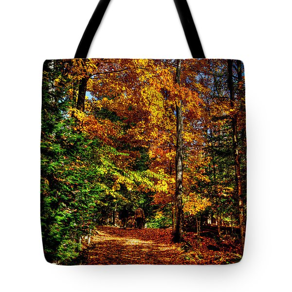Autumn Walk Tote Bag by David Patterson