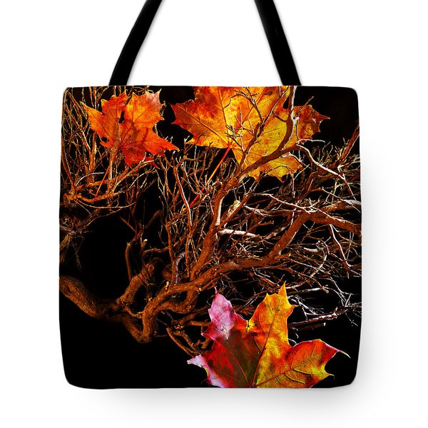 Tote Bag featuring the photograph Autumnal Feelings by Beverly Cash