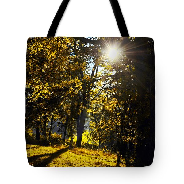 Autumnal Morning Tote Bag by Bill Cannon