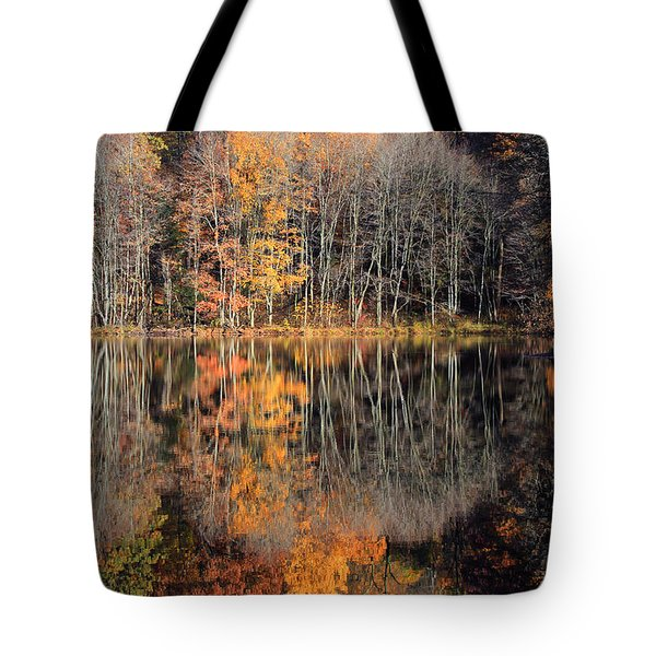 Autumns Art Tote Bag by Karol Livote
