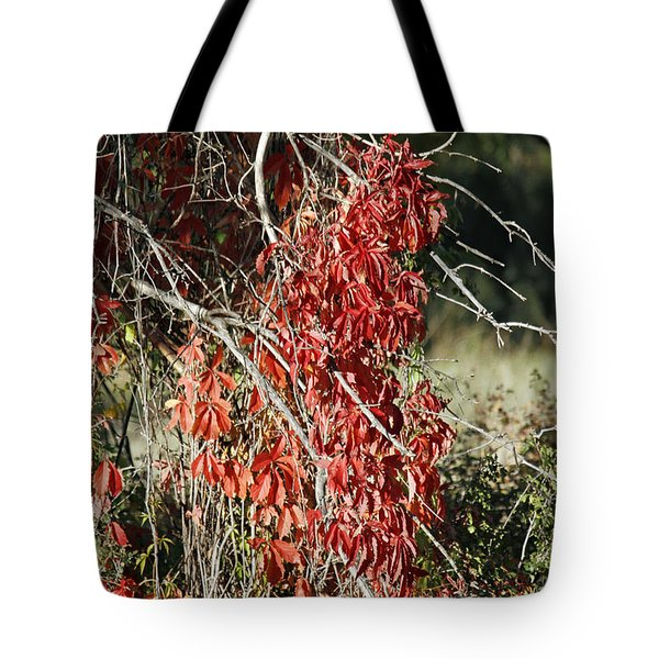 Autumns Red Vines Tote Bag