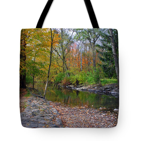 Autumn's Splendor Tote Bag by Kay Novy