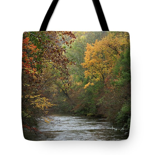 Autumn's Splendor Tote Bag by TnBackroadsPhotos