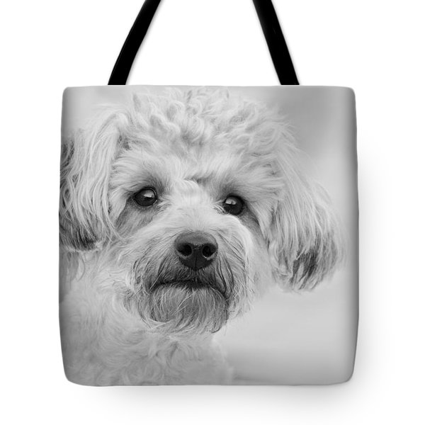 Awesome Abby The Yorkie-poo Tote Bag by Kathy Clark