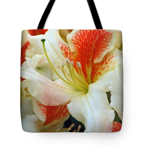 Tote Bag featuring the photograph Azaleodendron Glory Of Littleworth by Chris Anderson