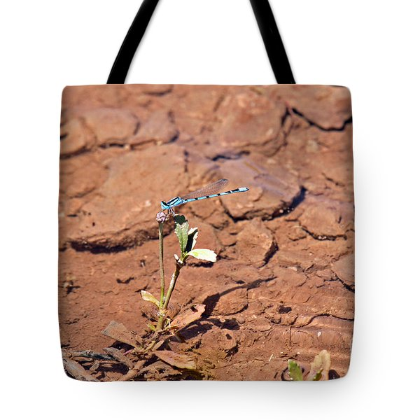 Azure Blue Damselfly Tote Bag
