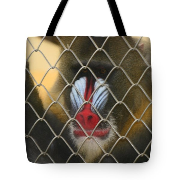 Tote Bag featuring the photograph Baboon Behind Bars by Kym Backland