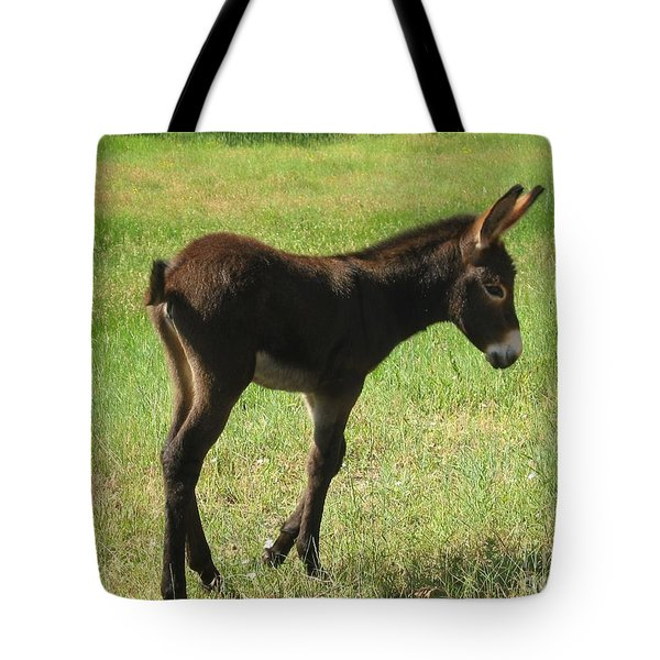 Tote Bag featuring the photograph Baby Burro Named Romper by Ann Johndro-Collins