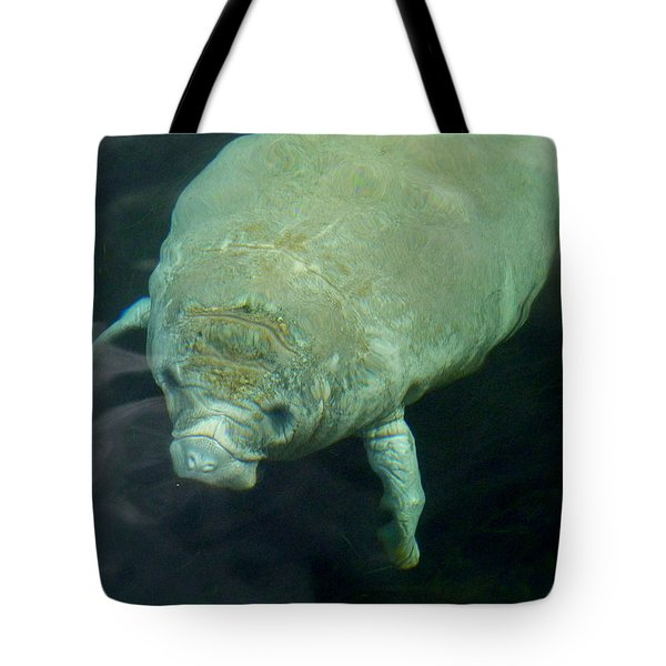 Baby Manatee Tote Bag by Carla Parris
