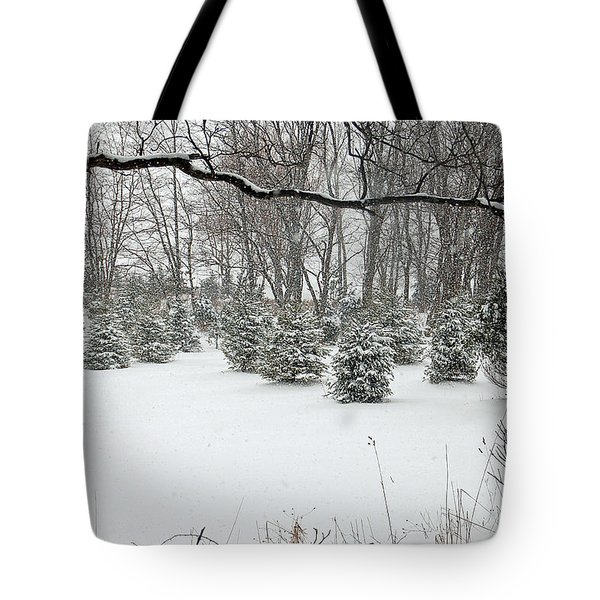 Baby Pines Tote Bag by Aimee L Maher Photography and Art Visit ALMGallerydotcom