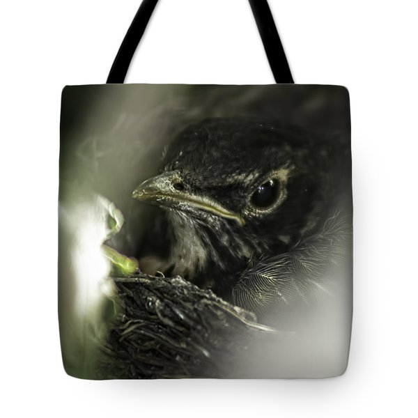 Tote Bag featuring the photograph Baby Robin by Tom Gort