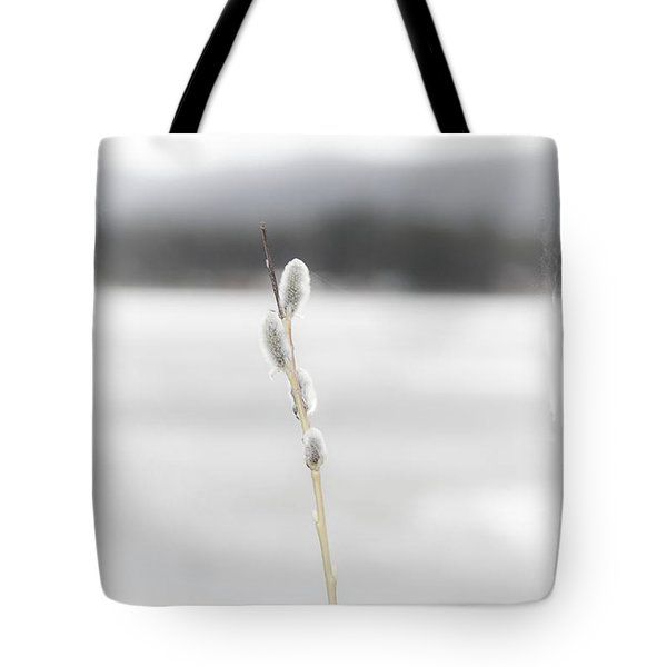 Baby Willows Tote Bag