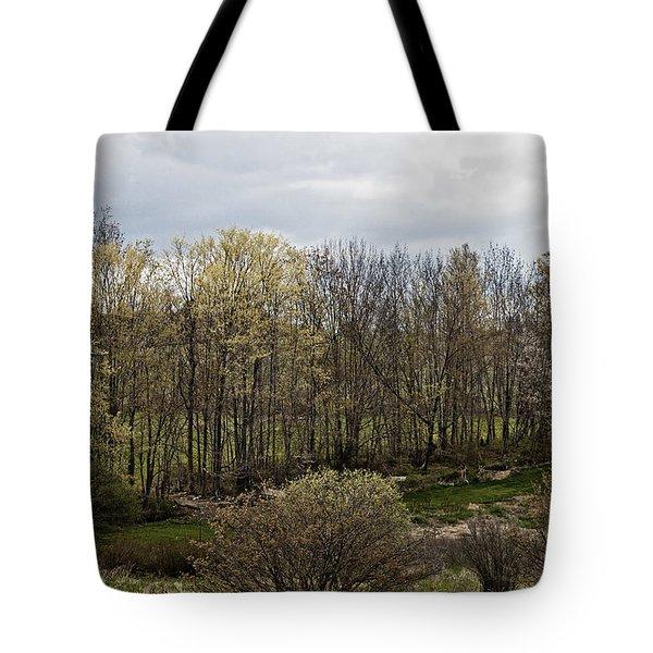 Back Yard Tote Bag