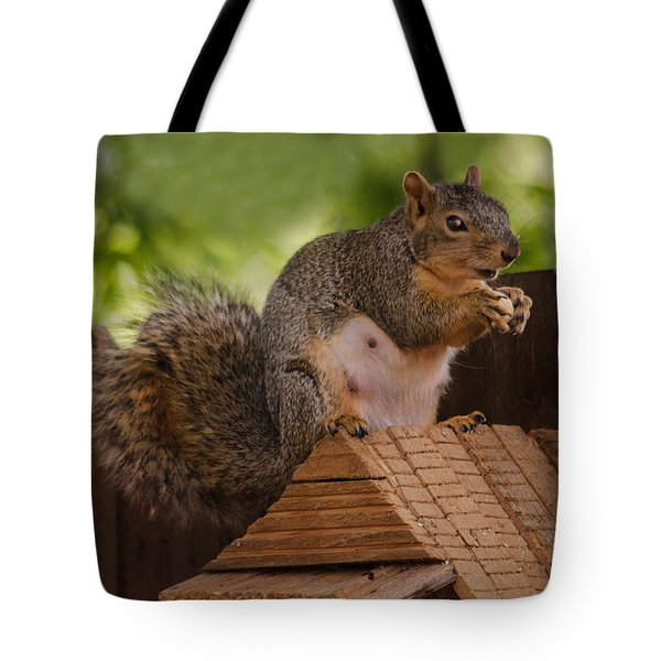 Back Yard Pet Tote Bag by Robert Bales