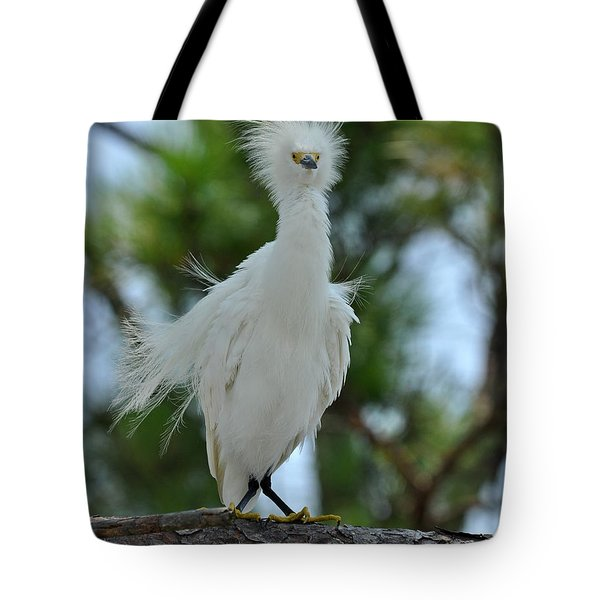 Bad Hair Day Tote Bag by Rick Frost