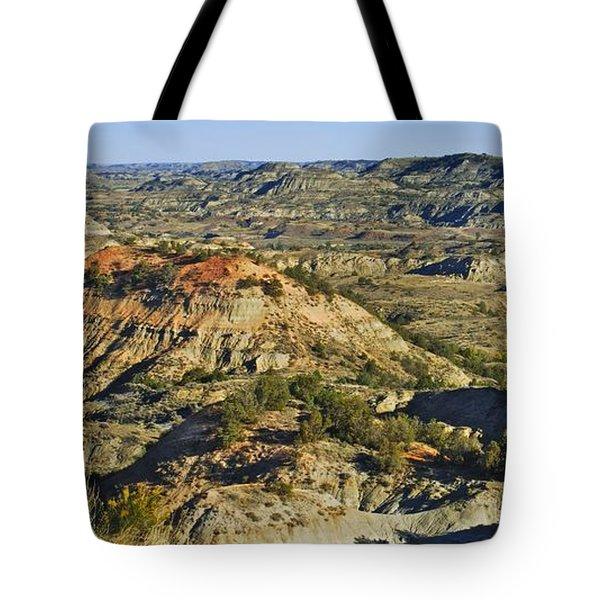 Bad Lands  Tote Bag by Michael Peychich