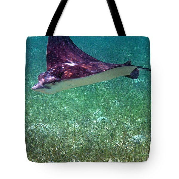 Bahamian Drive By Tote Bag