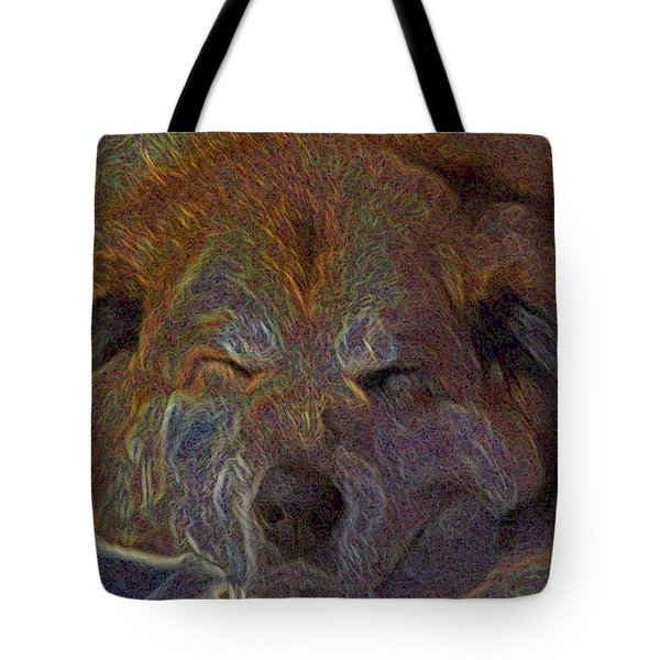 Baily May Tote Bag by One Rude Dawg Orcutt