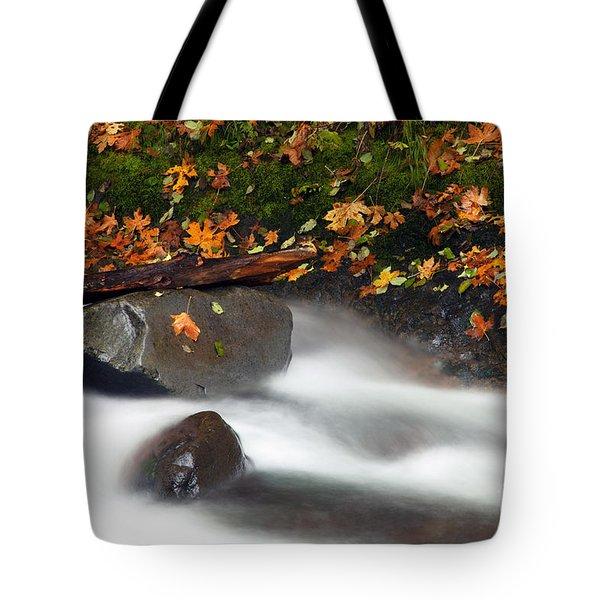 Balance Of The Seasons Tote Bag by Mike  Dawson
