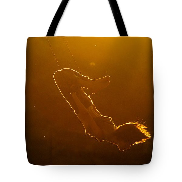 Balance The Light Tote Bag
