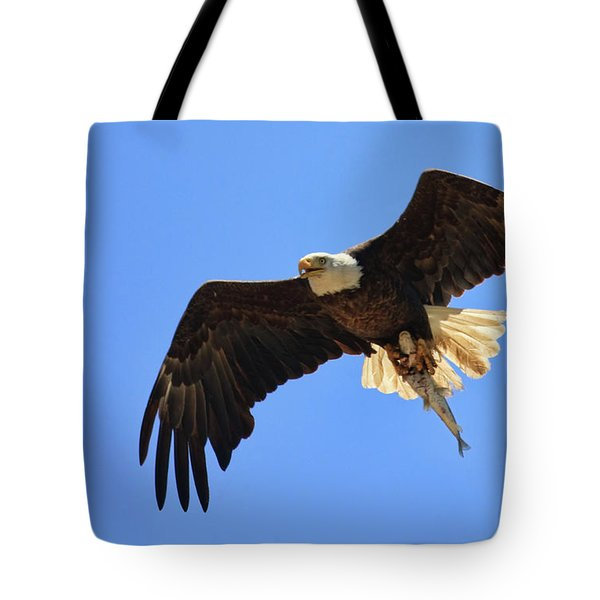 Bald Eagle Catch Tote Bag