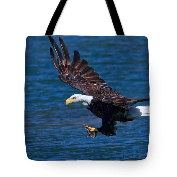 Bald Eagle On The Hunt Tote Bag by Beth Sargent