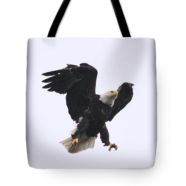 Bald Eagle Tallons Open Tote Bag by Kym Backland
