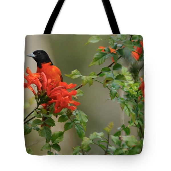 Baltimore Oriole In Orange Honeysuckle Tote Bag